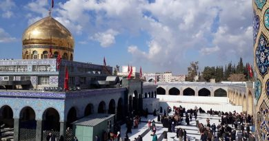 داستان آرامشی که حرم حضرت زینب به کودکان دمشق می داد!